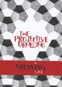 Catalog The Projective Drawing Paris, curator Brett Littman